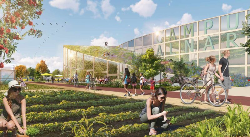 Urban farming, Concept for sustainability, biodiversity and recreation